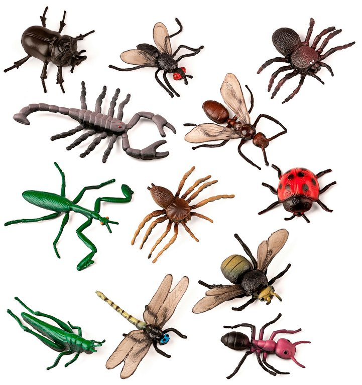Animals insectes 12 uts